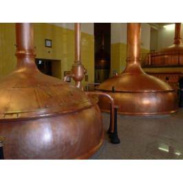 Zážitek - Kurz domácího vaření piva - Pardubický kraj