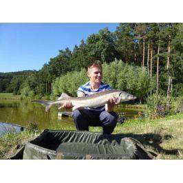 Zážitek - Kurz rybaření pro začátečníky - Královéhradecký kraj