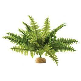 Rostlina EXO TERRA Boston Fern střední