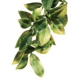 Exo Terra Rostlina ExoTerra plast Mandarin střední
