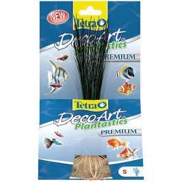 Rostlina TETRA Hairgrass S