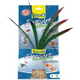 Rostlina TETRA Dragonflame S
