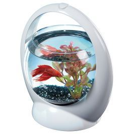 Akvárium TETRA Betta Ring 1,8l