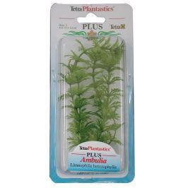 Rostlina TETRA Ambulia Plus 15 cm
