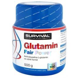 Survival Glutamin Fair Power 500 g
