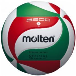 Volejbalový míč Molten V5M5500