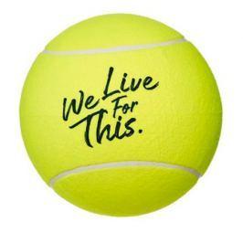 Tenisový míč Babolat Jumbo Ball French Open