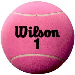 Tenisový míč Wilson Roland Garros 5