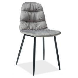 Casarredo Jídelní čalouněná židle VEDIS šedá