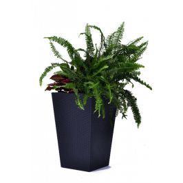 Rojaplast Květináč Rattan planter L