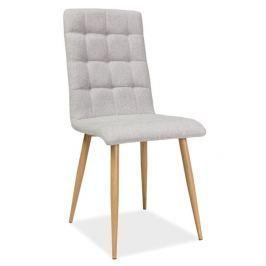 Casarredo Jídelní čalouněná židle OTTO béžová/dub