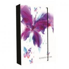 Karton P+P Box na sešity A4 Jumbo Romantic Nature Motýl