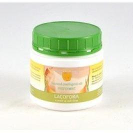 Chemoform saunová peelingová sůl Pepermint 500g