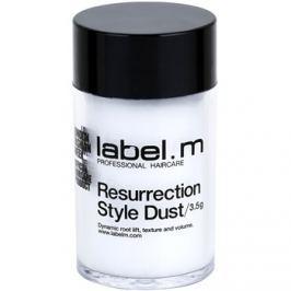 label.m Complete vlasový pudr pro objem od kořínků  3,5 g