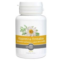 Kopretina řimbaba+vitamin B6 a hořčík