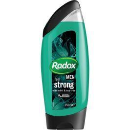 Radox Men Feel Strong Mint & Tea Tree 2v1 sprchový gel a šampon pro muže 250 ml