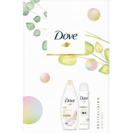 Dove Nnourishing Revitalizing Silk sprchový gel pro ženy 250 ml + Invisible Dry Clean Touch antiperspirant sprej 150 ml, kosmetická sada
