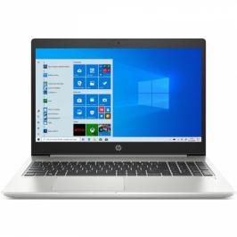HP 455 G7 (1Q3J4ES#BCM)