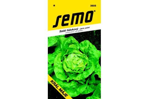 Semo Salát hlávkový jarní polní Král Máje 0,5 g Semena