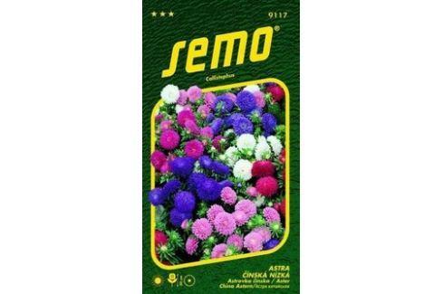 Semo Astra Čínská nízká Colour Carpet - směs 0,5 g Semena
